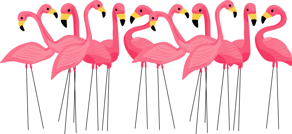 kelly jane flamingo flock