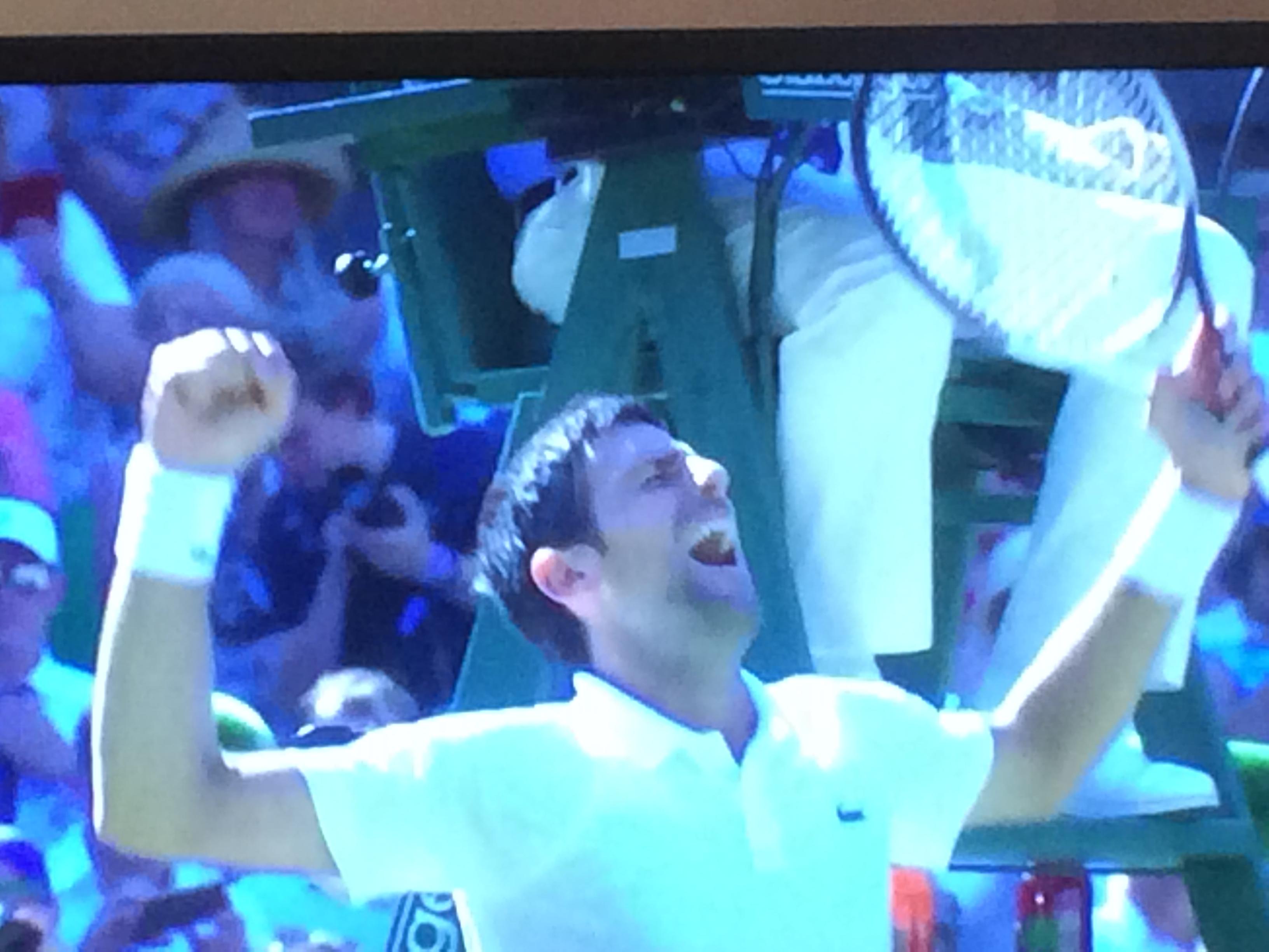 Djokovic winning Wimbledon 2018